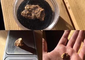 Ein 11 Gramm schweres Goldnugget gefunden bei der Starddust-Mine