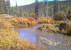 Panorama at California Creek