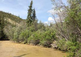 Oz2 am Big Creek