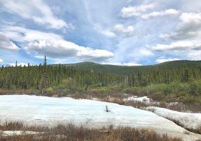 der letzte Schnee am Five Mile Creek