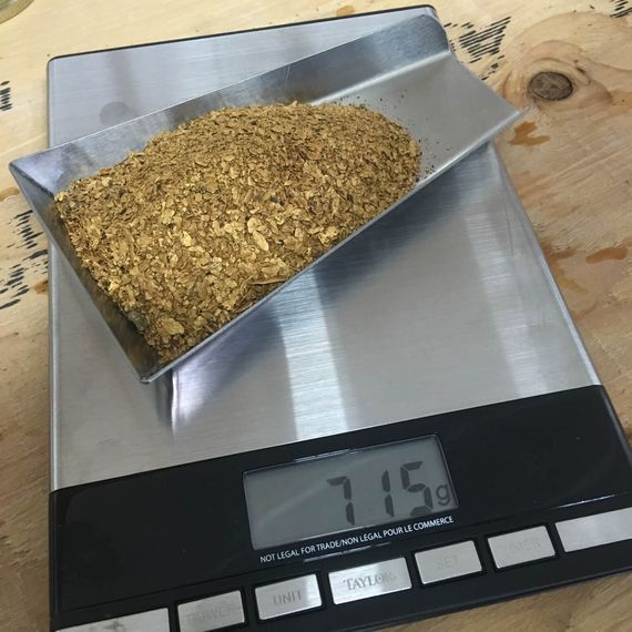 Gold on scale great result